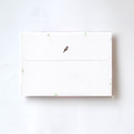 Envelope (bird)CGLE1006