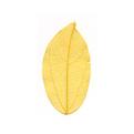 Natural leafCGHM269