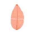 Natural leafCGHM270