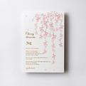 桜はがき箋CGH117
