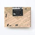 猫柄 ミニ封筒CGLES1010
